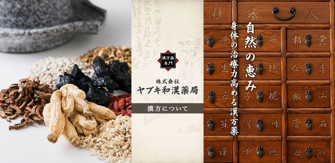 漢方について 大阪の老舗漢方薬局「ヤブキ和漢薬局」